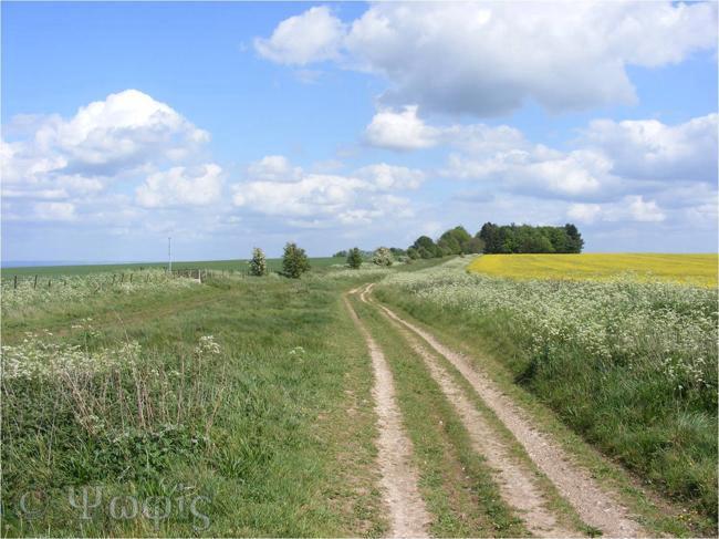 Great Ridgeway,Ridgeway