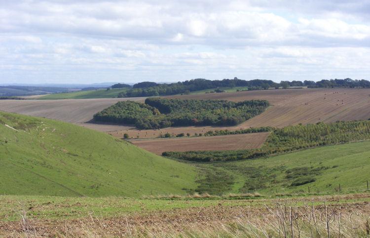 view,ridgeway