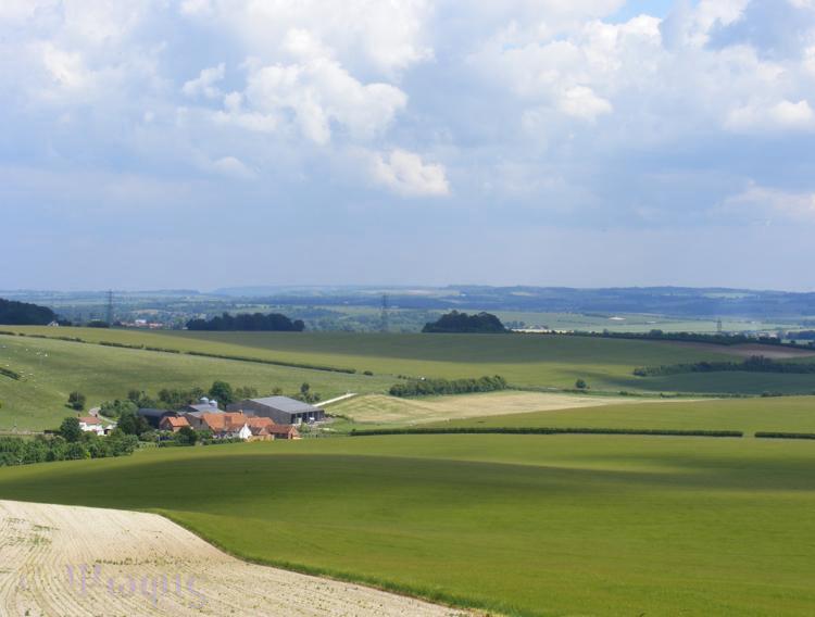 ridgeway view