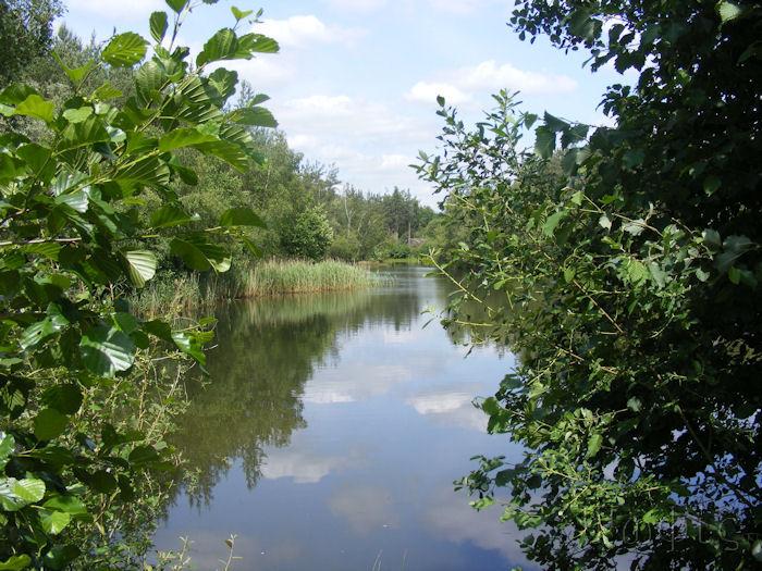 Bramshill,Pond