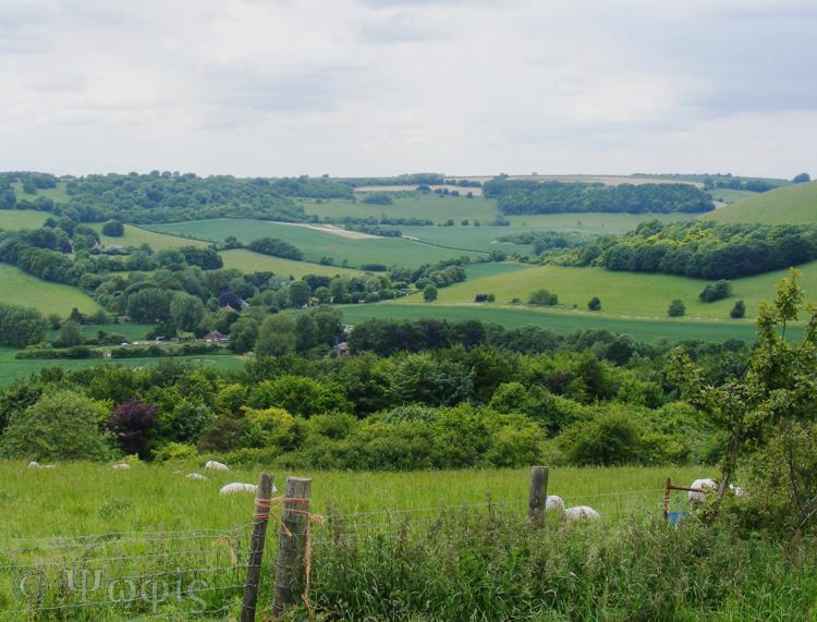 Combe view
