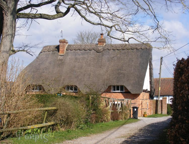 South Moreton,thatched cottage
