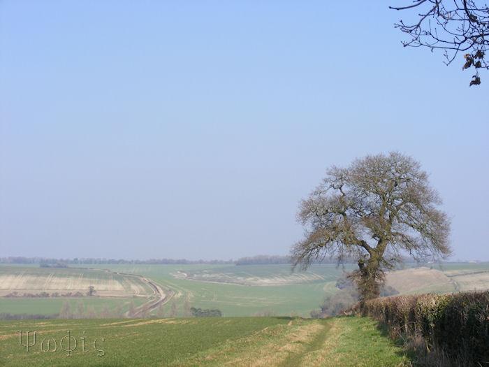 Weston view