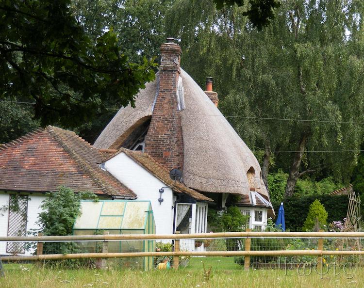 thatch,cottage