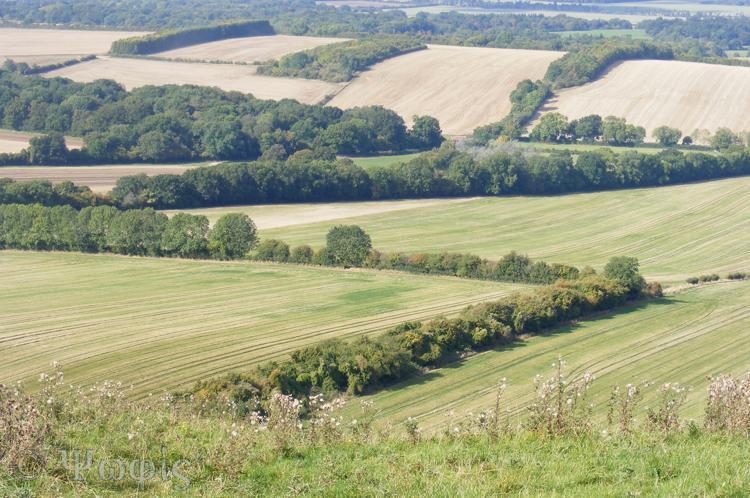 inkpen hill