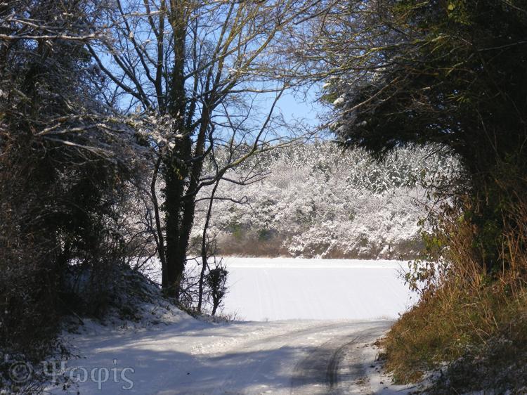 snow,lane