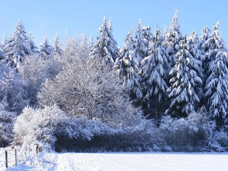 snow,narnia