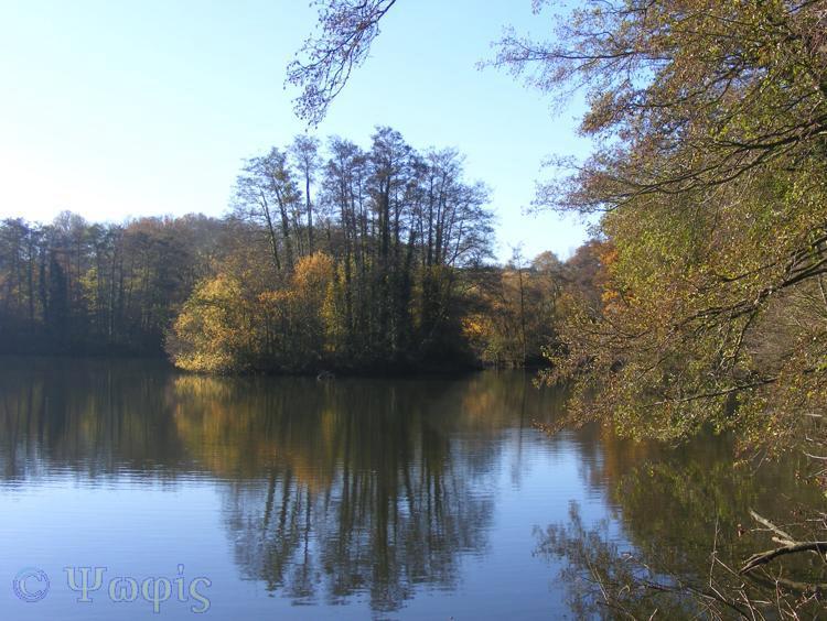 Theale,lake