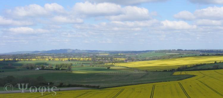 Great Bedwyn view