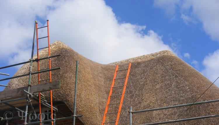thatching,thatched roof
