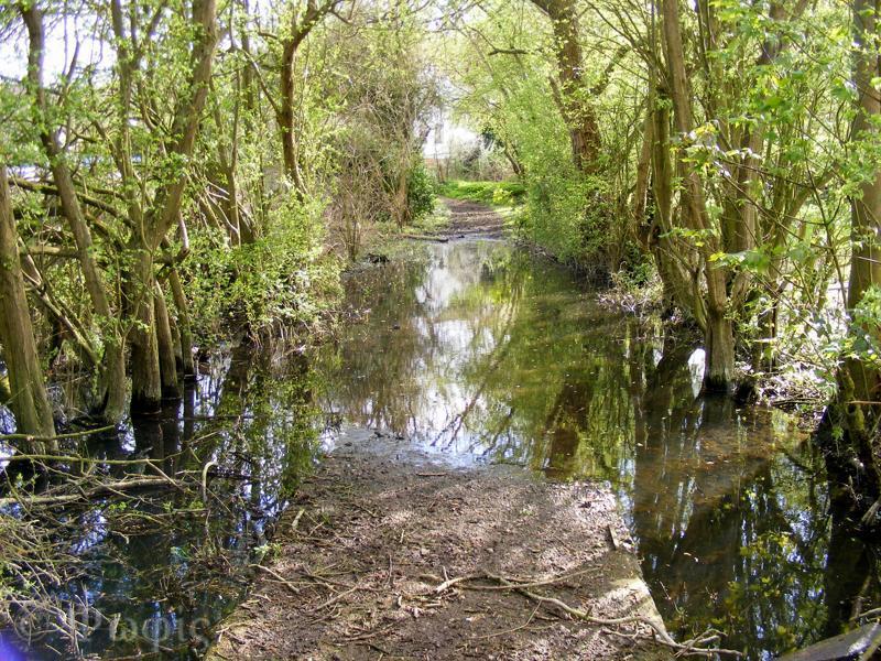 Streatley floods,flooded path,Thames Path