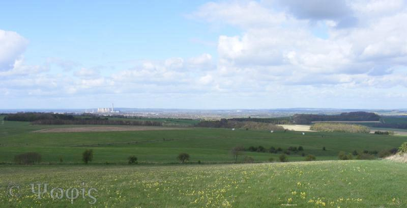 Lowbury Hill,view,dicot