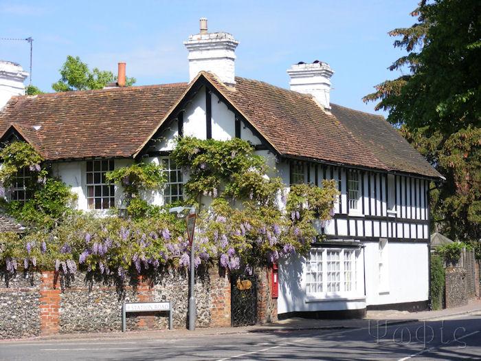 Wargrave,Wisteria,Wargrave High Street