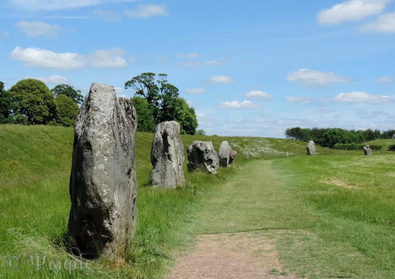 sarsen stone,stone circle,Avebury