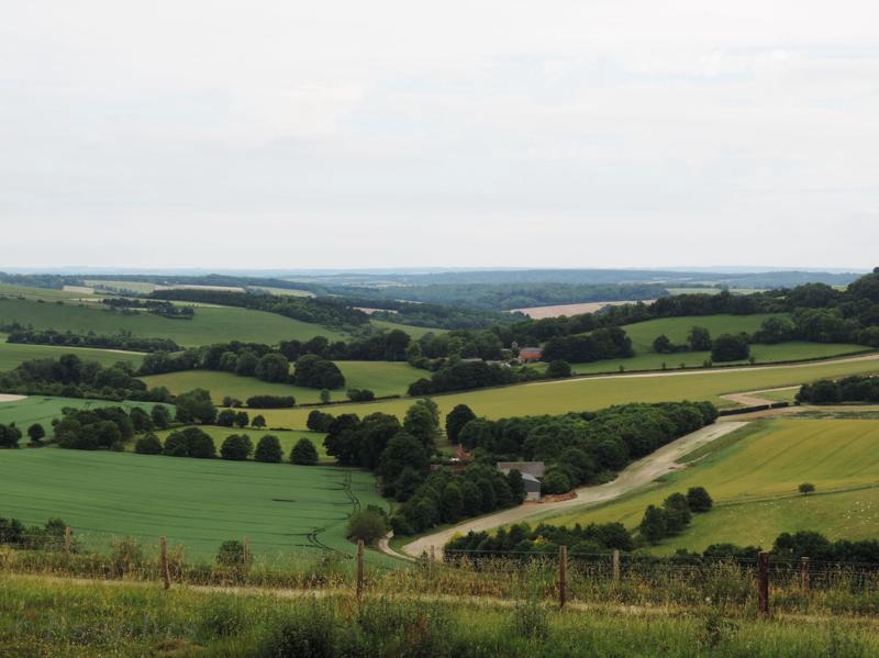 view Walbury Hill