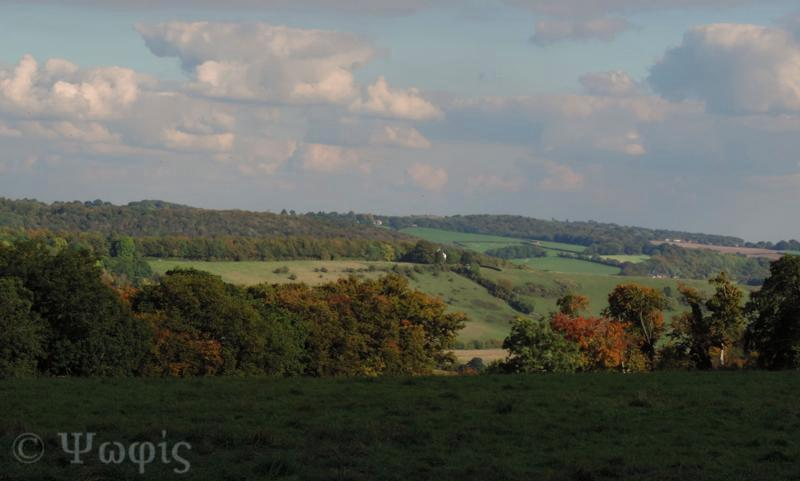 view,Turville Heath