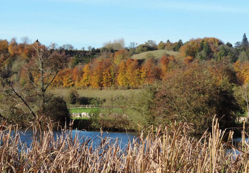 autumn,view