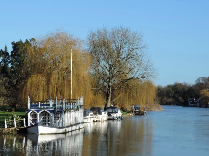 Thames,boats