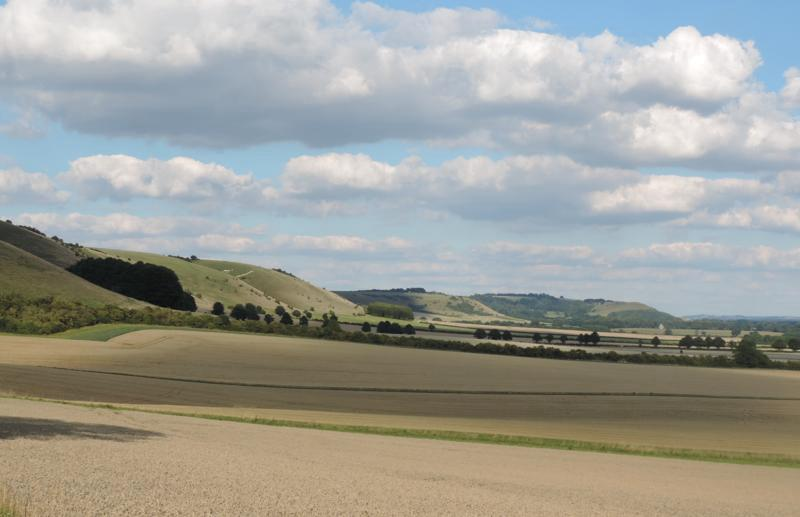 chalk downs